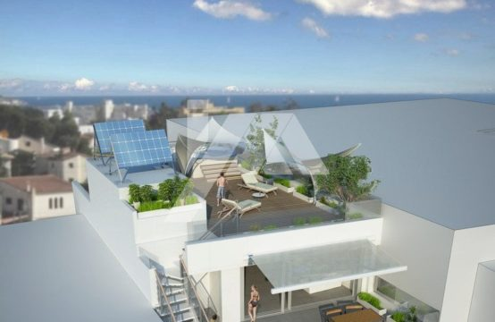 High quality and very luxury penthouse nearby the beach IPM1CCBS1