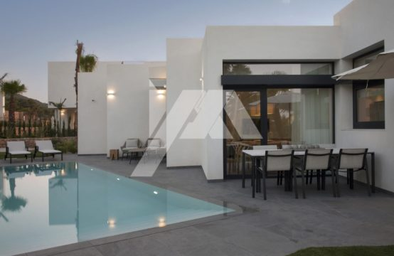 Amazing villa 13063-011