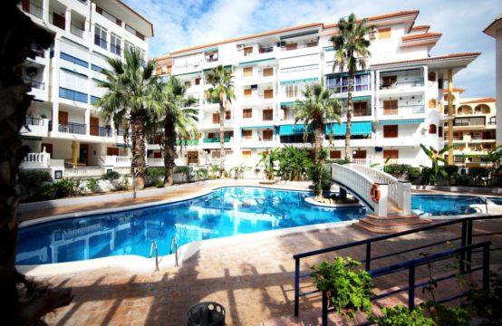 Apartment in La Mata LM94